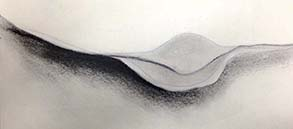 study of sea shell, drawing, charcoal and paper.